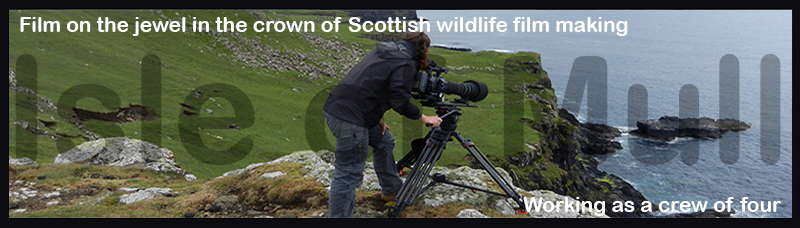 Isle of Mull Diploma Course